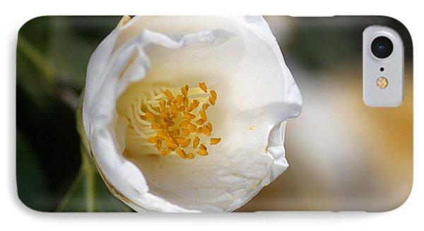 White Camellia  Phone Case by Joy Watson