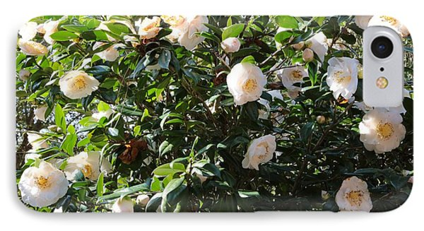 White Camellias Phone Case by Carol Groenen
