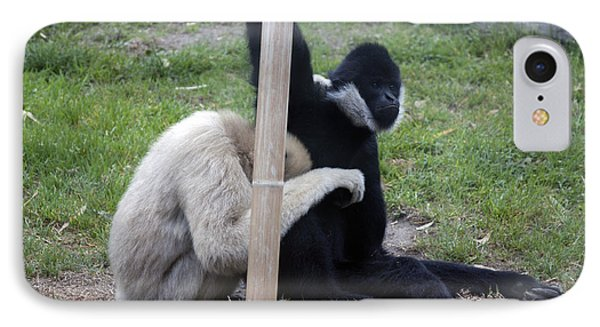 White-cheeked Gibbon - 0001 IPhone Case