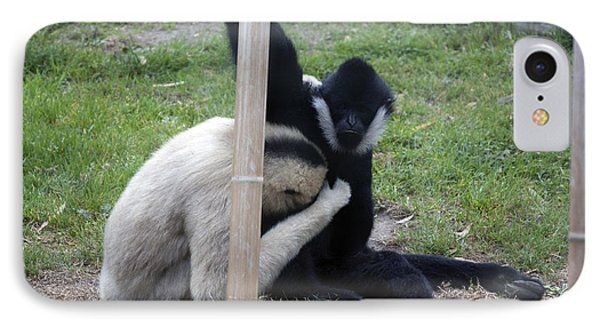 White-cheeked Gibbon - 0002 IPhone Case