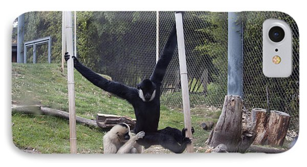 White-cheeked Gibbon - 0003 IPhone Case
