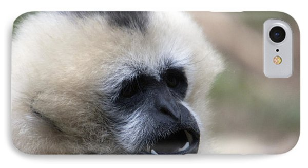 White-cheeked Gibbon - 0009 IPhone Case