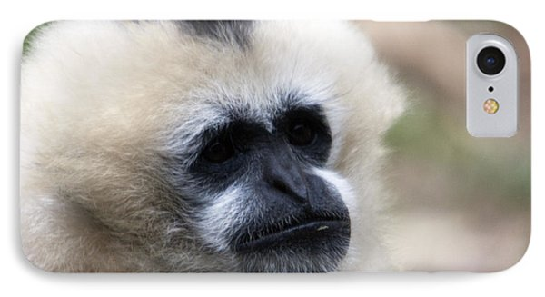 White-cheeked Gibbon - 0010 IPhone Case