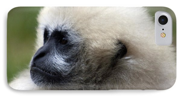 White-cheeked Gibbon - 0011 IPhone Case