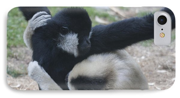 White-cheeked Gibbon - 0013 IPhone Case