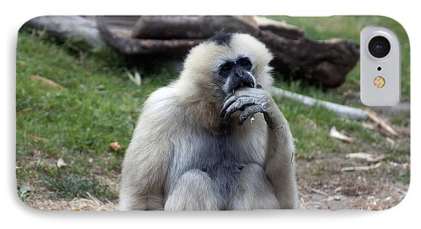 White-cheeked Gibbon - 0015 IPhone Case