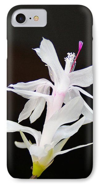 IPhone Case featuring the photograph White Christmas Cactus by B Wayne Mullins