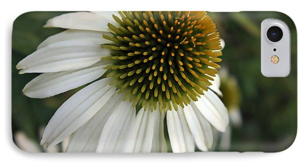 White Coneflower IPhone Case by Ellen Tully