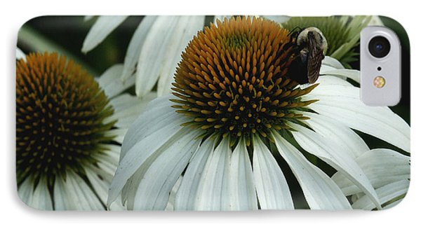 IPhone Case featuring the photograph White Coneflowers  by James C Thomas