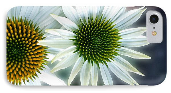 White Conehead Daisy IPhone Case by Arlene Carmel