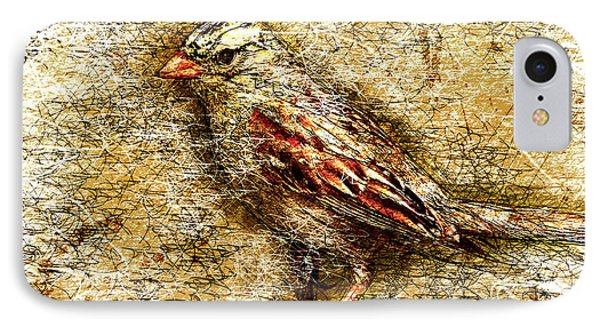 White Crowned Sparrow IPhone Case by Gary Bodnar
