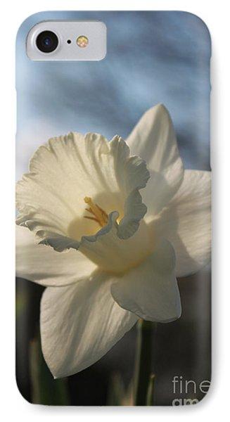 White Daffodil Phone Case by Jennifer E Doll