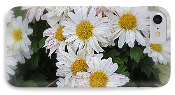 White Daisies Phone Case by Kay Novy