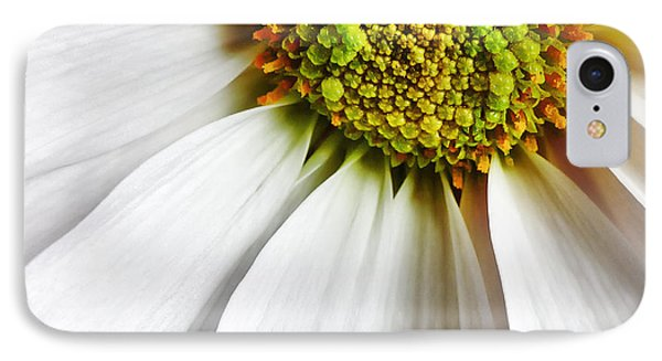 White Daisy Closeup Phone Case by Madonna Martin
