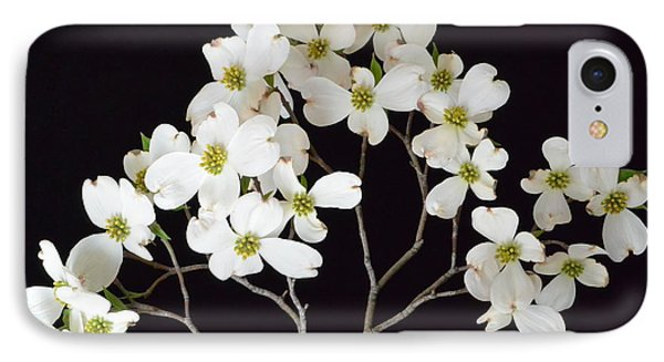 IPhone Case featuring the photograph White Dogwood Branch by Jeannie Rhode