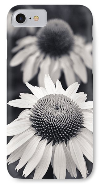 White Echinacea Flower Or Coneflower IPhone Case