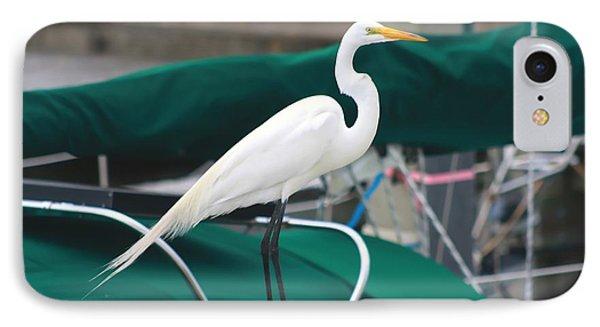 White Egret Phone Case by Debra Forand