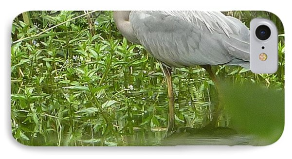 IPhone Case featuring the photograph White Egret Double  by Susan Garren