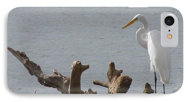 IPhone Case featuring the photograph White Egret by Jimmie Bartlett