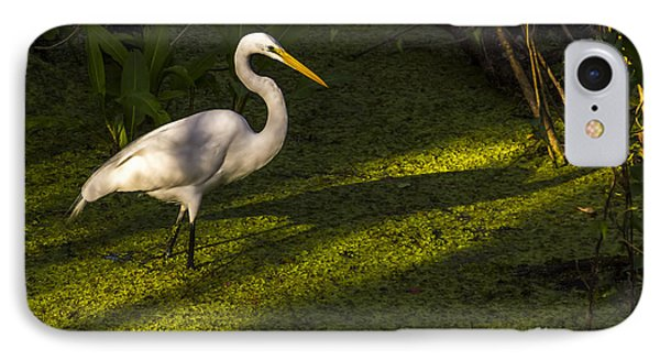 White Egret IPhone Case by Marvin Spates