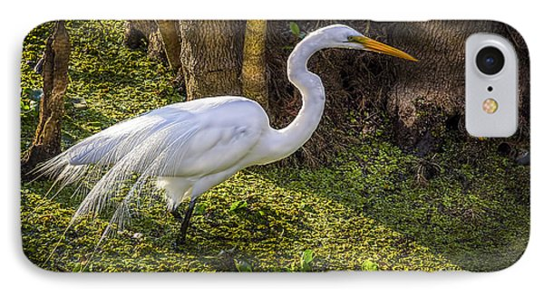 White Egret On The Hunt IPhone Case by Marvin Spates