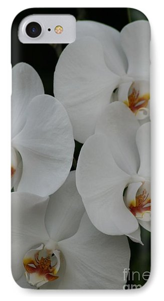 White Elegance IPhone Case by Mary Lou Chmura