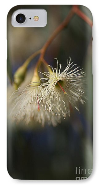 White Eucalyptus  Phone Case by Joy Watson