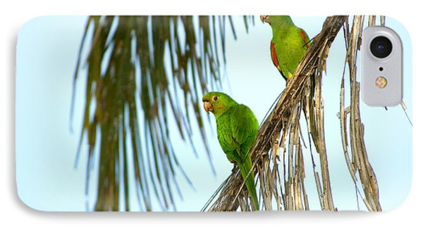 White-eyed Parakeets, Brazil IPhone Case by Gregory G. Dimijian, M.D.