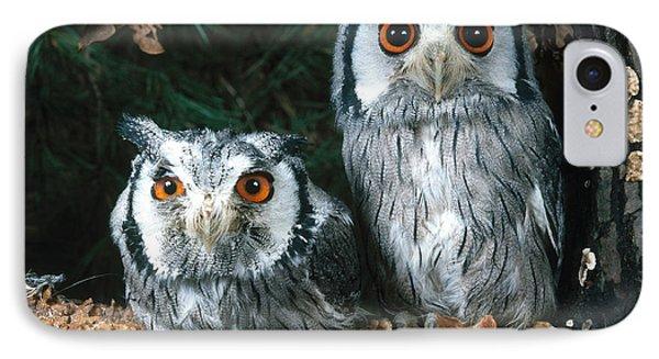 White Faced Scops Owl Phone Case by Hans Reinhard