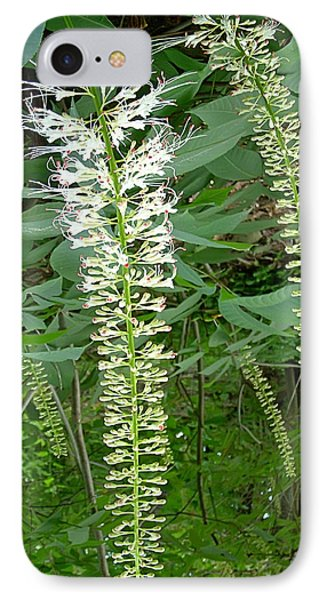 White Fern Phone Case by Aimee L Maher Photography and Art Visit ALMGallerydotcom