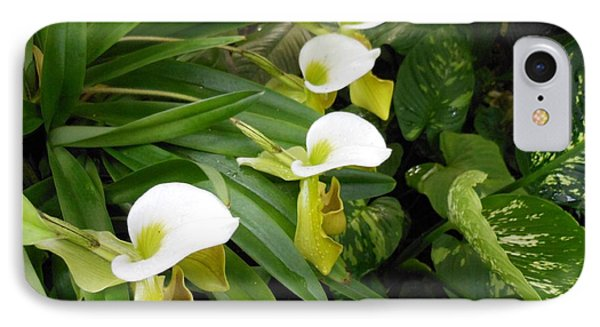 White Flower Array IPhone Case by Kay Gilley