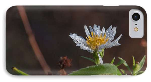 IPhone Case featuring the photograph White Flower Dew-drops Autumn by Jivko Nakev