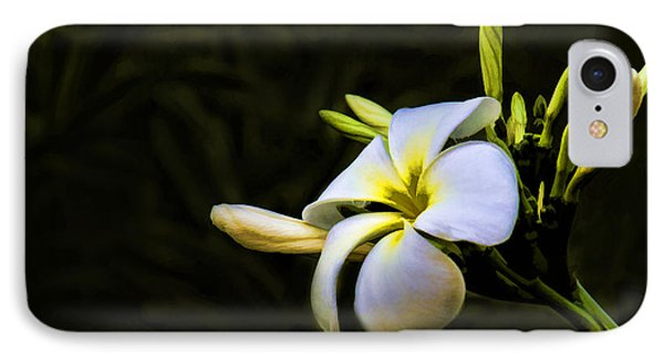 IPhone Case featuring the photograph White Flower by Don Durfee