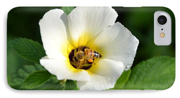 IPhone Case featuring the photograph White Flower- Nectar by Darla Wood