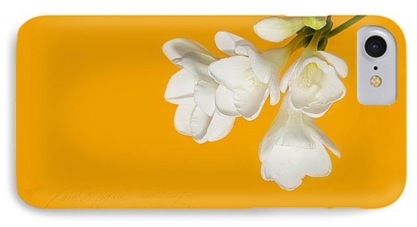 IPhone Case featuring the photograph White Flowers On Tangerine Study by Lisa Knechtel