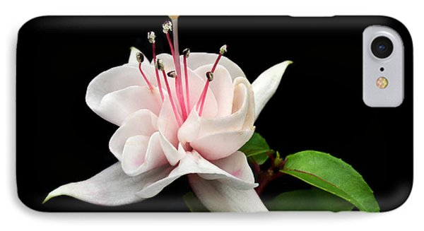 White Fuchsia. IPhone Case by Terence Davis