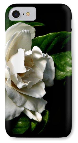 White Gardenia IPhone Case by Rose Santuci-Sofranko