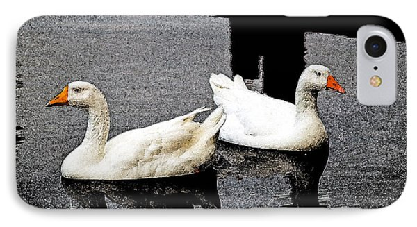 White Geese IPhone Case by Randy Sylvia