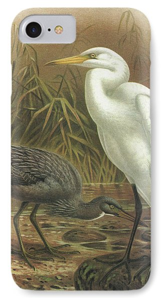 White Heron And Reef Heron IPhone Case by Rob Dreyer