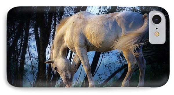 IPhone Case featuring the photograph White Horse In The Early Evening Mist by Nick  Biemans