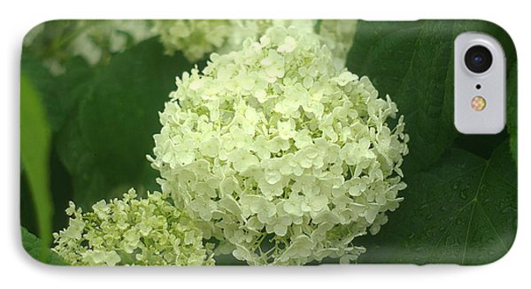 IPhone Case featuring the photograph White Hydrangea Blossoms by Suzanne Powers
