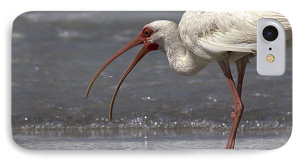 IPhone Case featuring the photograph White Ibis On The Beach by Meg Rousher