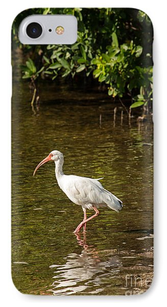 White Ibis On The Water IPhone Case by Natural Focal Point Photography