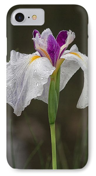 White Iris IPhone Case by Shirley Mitchell