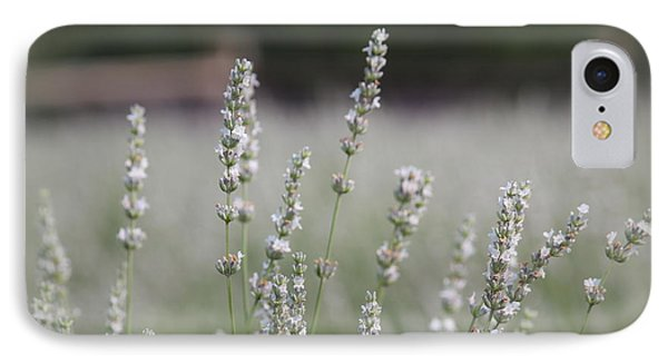 IPhone Case featuring the photograph White Lavender by Lynn Sprowl