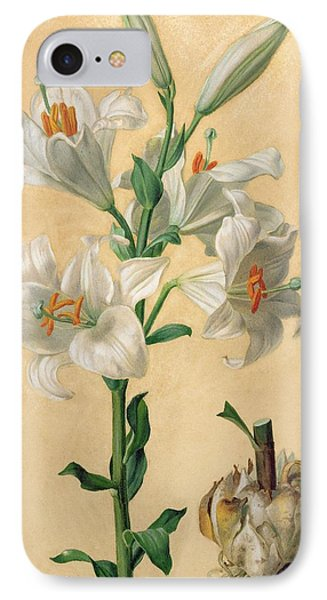 White Lily IPhone Case by Carl Franz Gruber