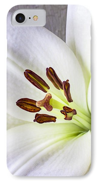 White Lily Close Up IPhone Case by Garry Gay