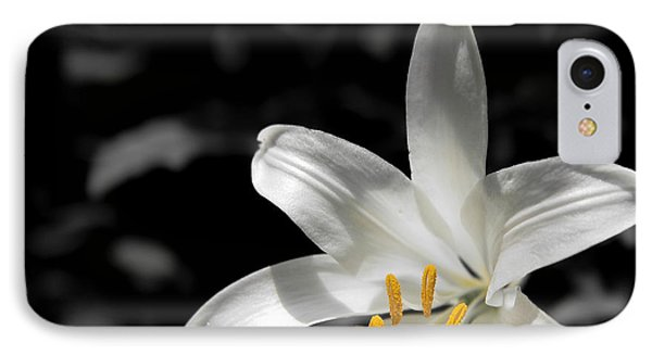 White Lily With Yellow Stamens Against Dark Background IPhone Case