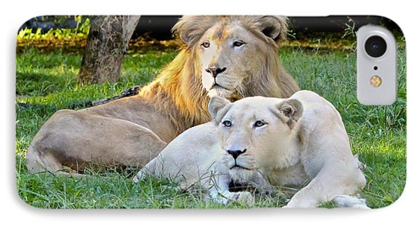 White Lion And Lioness IPhone Case by Venetia Featherstone-Witty