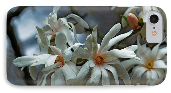 IPhone Case featuring the photograph White Magnolia by Rowana Ray